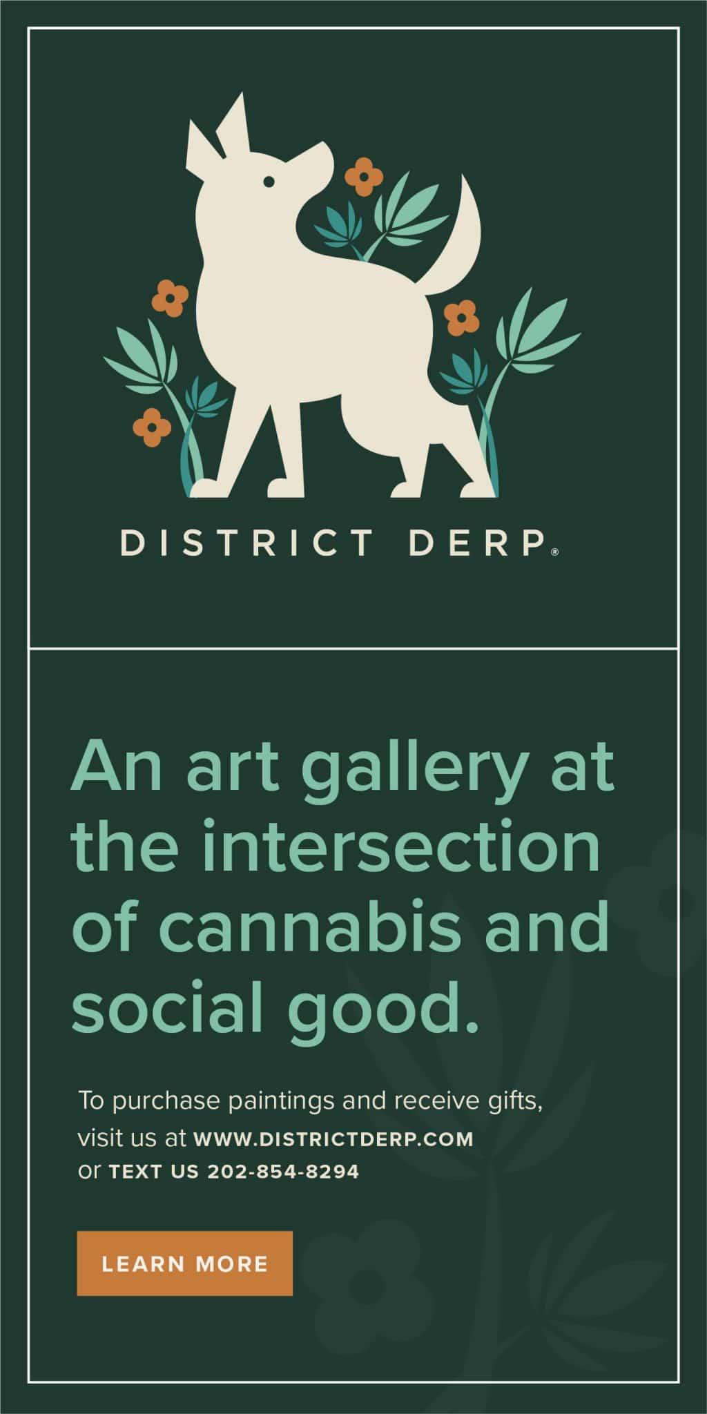 Digital advertisement design for District Derp